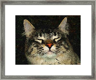 Jeff Fray Framed Print by Paula Greenlee