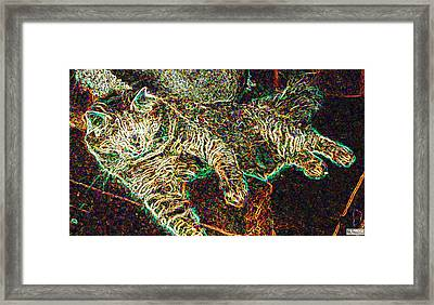 Jeff Reclining Framed Print by Paula Greenlee