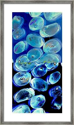 Jelly Bean Jewels 7 Framed Print by Randall Weidner