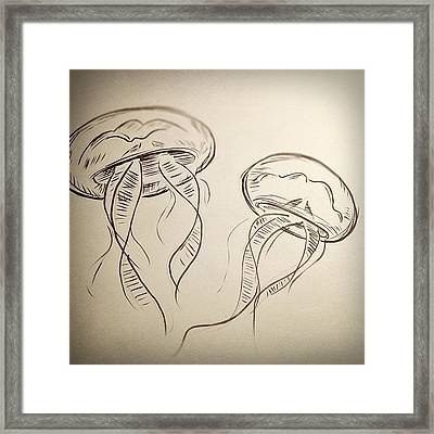#jellyfish #drawing Framed Print