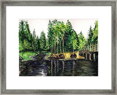 Jersey Pines Framed Print by Clara Sue Beym