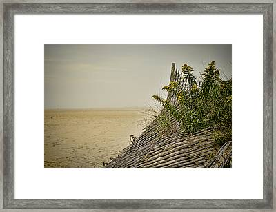 Jersey Shore Framed Print by Heather Applegate