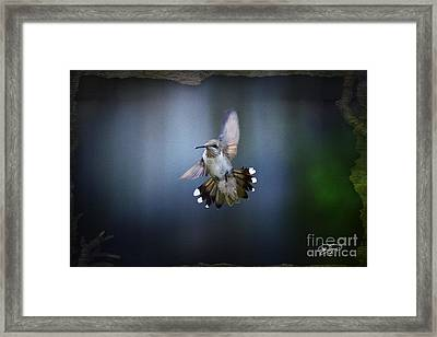 Jet Fighter Framed Print