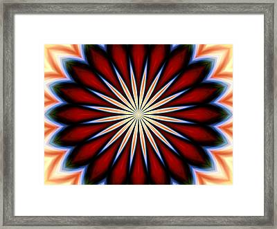Jewel Framed Print by Danny Lally