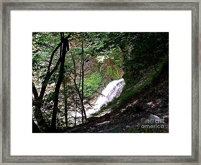 Framed Print featuring the photograph Jewell Of The Forest by Christian Mattison