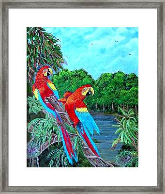 Jewels Of The Amazon Framed Print