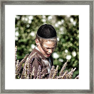 Jewish Boy - New York Framed Print by Joel Lopez