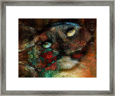 Jezebel Framed Print by Janet Kearns