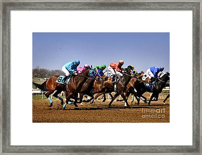 Framed Print featuring the photograph Jockeying For Position by Nava Thompson