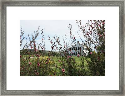 Johnston House In Half Moon Bay Framed Print by Susan Alvaro