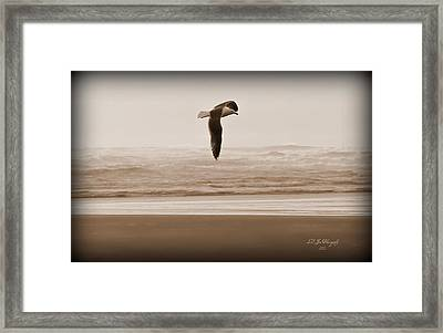 Framed Print featuring the photograph Jonathon by Jeanette C Landstrom