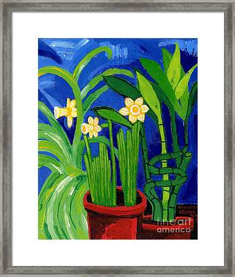 Jonquils And Bamboo Plant Framed Print by Genevieve Esson