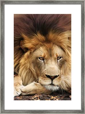 Joseph Framed Print by Big Cat Rescue