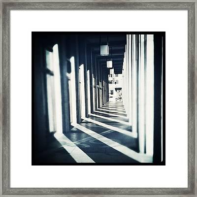 @joshjohnson #jj_forum #shadow (repost) Framed Print