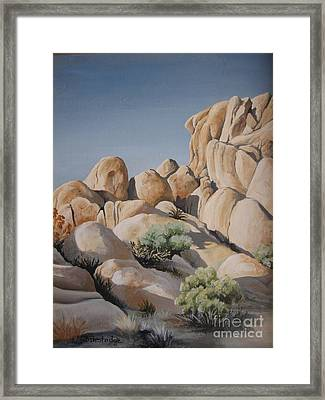 Joshua Tree 1 Framed Print