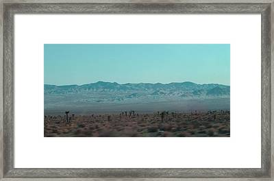 Joshua Trees Framed Print by Naxart Studio
