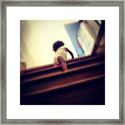Journee Climb All The Way To The Top Of Framed Print by Jermaine Young