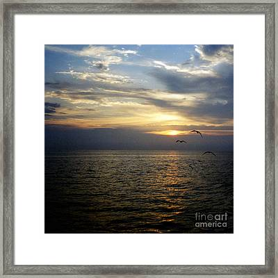 Journey Into The Horizon Framed Print by Thomas Luca