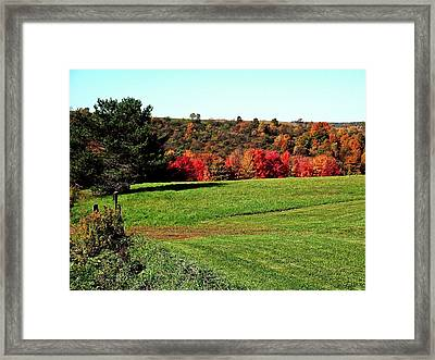 Framed Print featuring the photograph Joy by Christian Mattison