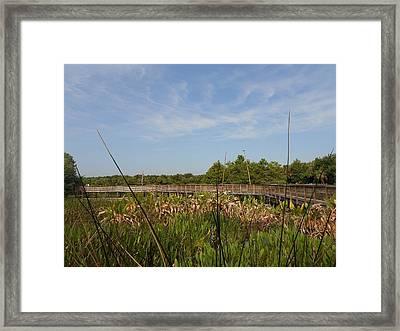 Joy In The Journey Framed Print by Sheila Silverstein