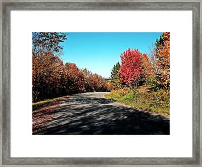 Framed Print featuring the photograph Joy Ride by Christian Mattison