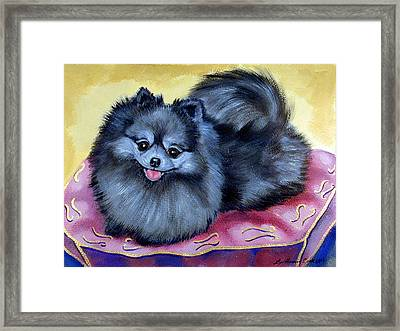 Joyful - Pomeranian Framed Print