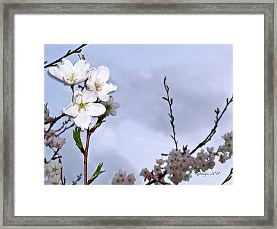 Joyous Laugh Framed Print by Rotaunja