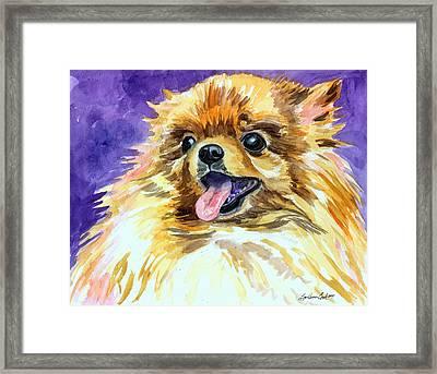Joyous Soul - Pomeranian Framed Print