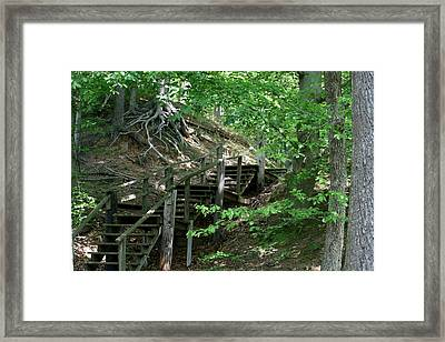 Jug Bay Secrets Framed Print by Valia Bradshaw