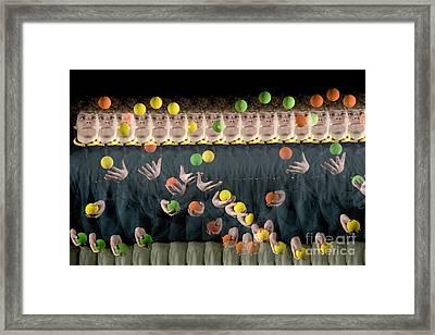 Juggler Framed Print by Ted Kinsman