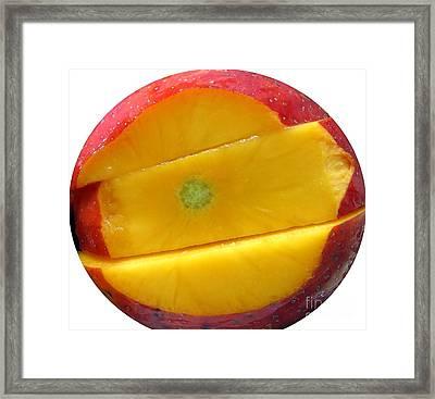 Juicy Red Mango Framed Print by Yali Shi