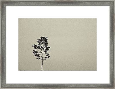 Framed Print featuring the photograph Julie by Michael Nowotny