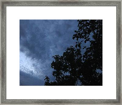 June Apple Trees In The Clouds Framed Print by Charles Dancik