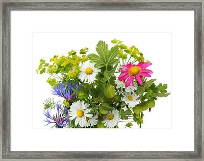 Framed Print featuring the photograph June Bouquet by Aleksandr Volkov