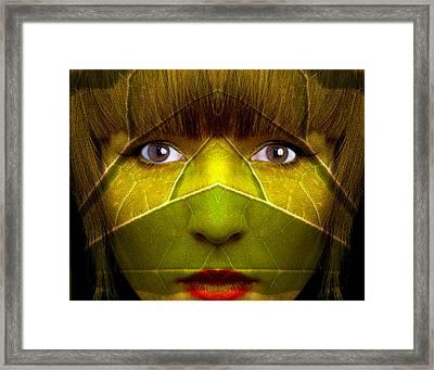 Jungle Denizen Framed Print by Jim Painter