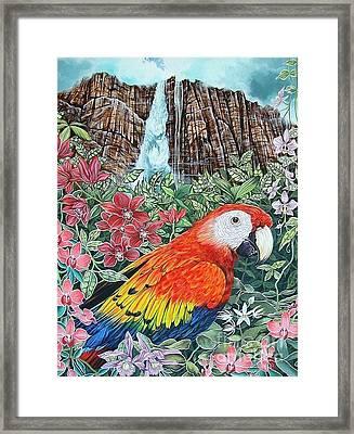 Jungle Parrot Framed Print by Kimberlee  Ketterman Edgar