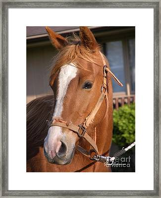 Just A Face Framed Print by Yumi Johnson