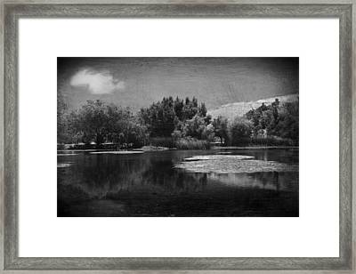 Just A Feeling Framed Print by Laurie Search