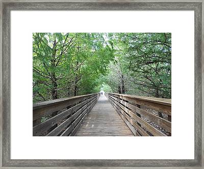 Just A Glimpse Framed Print by Sheila Silverstein