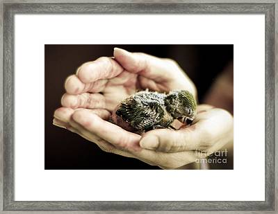 Just A Little Caring Framed Print
