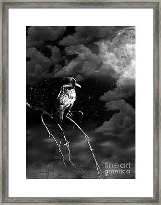 Framed Print featuring the photograph Just Another Moonlight Mile by Rhonda Strickland