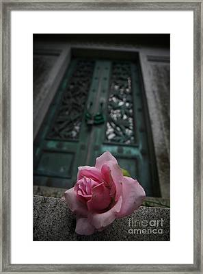 Just Beechy Framed Print by Sid Graves