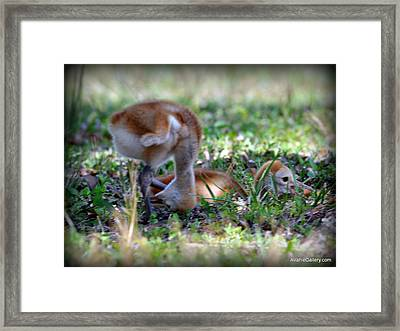 Framed Print featuring the painting Just Checking by AnnaJo Vahle