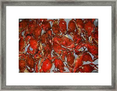 Just Crabs Framed Print by Jim Ziemer