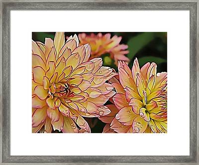 Just Dew Framed Print by Dorothy Hilde
