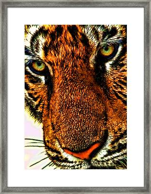 Framed Print featuring the photograph Just Face It by Joetta West