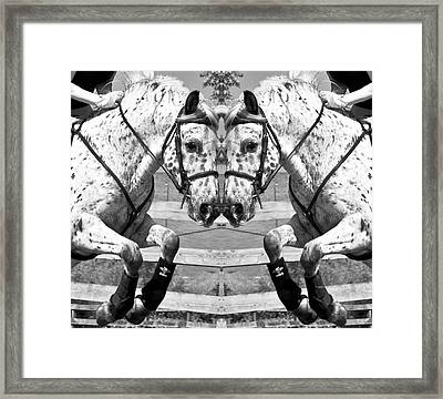 Just Jump It Framed Print by Betsy Knapp