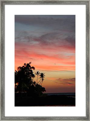 Just Love Framed Print by Raquel Amaral