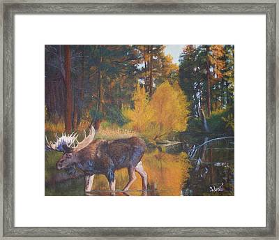 Just Passing Through Framed Print by Bill Werle