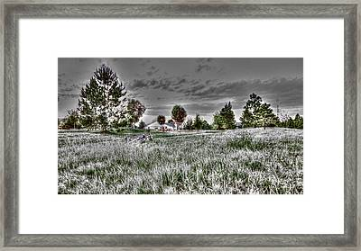 Just Resting Framed Print by Sergio Aguayo